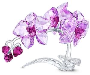 Фигурка Swarovski CRYSTAL FLOWERS - ORCHID 5520373
