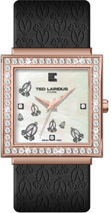 Ted Lapidus C77061 YNG